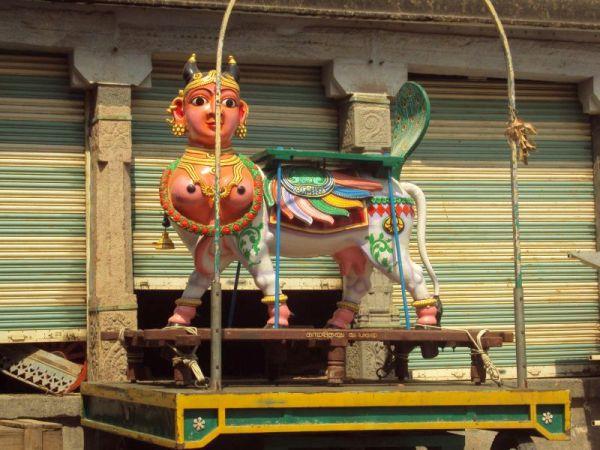 Gomatha chariot