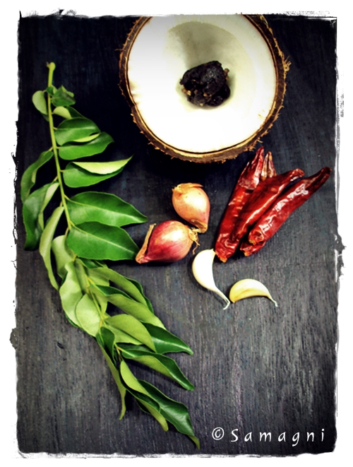 Roasted Coconut Chutney Ingredients
