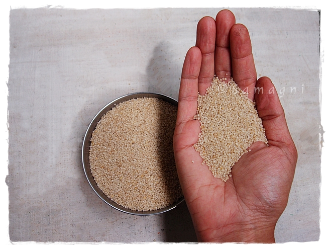 Kodo rice millet